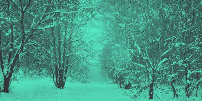 Crypto Winter Edition